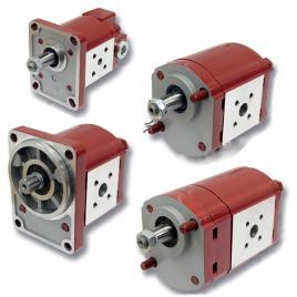 External Gear Motors